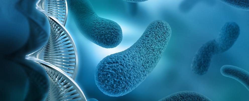 antibiotics resistance